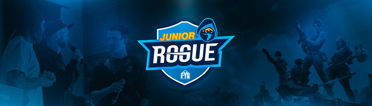 Image result for junior rogue
